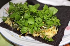 Chickweed, fenugreek sprouts and avocado chestnut wrap