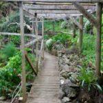 Great Barrier Island adventure
